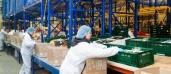 B+S managt Lagerlogistik für Kochbox-Versand Hello Fresh