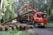 Zaugg Transporte GmbH in Schwanden setzt auf Euro-6-Scania.