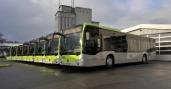 Busland setzt 16 Mercedes-Benz Citaro ein