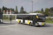 131 VDL Citea-Busse für belgischen Personenbeförderer De Lijn