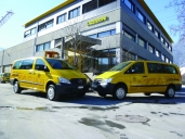 Die Lazzarini AG setzt in der Südostschweiz auf den Vito 4x4